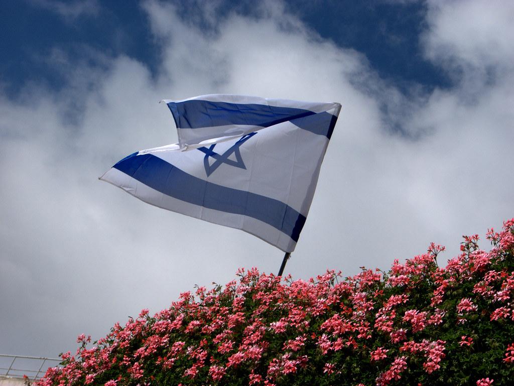 דגל ישראל מתנופף מעל פרחים אדומים
