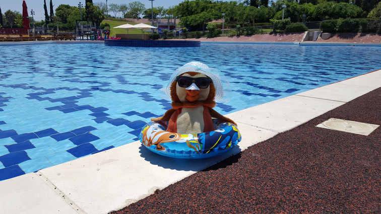 פעילויות לילדים בחופש הגדול במוזיאון הילדים -ינשול בבריכה